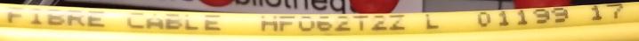 jarretiere-jaune.png